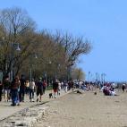 多伦多周末好去处/旅游景点/节目 : The Beach, Water Treatment Plant 和 爵士音乐节