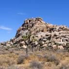 要去沙漠露营?! (美国加州 Joshua Tree 国家公园自驾游)